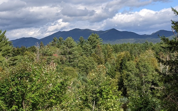 View of the Sentinel Mountain Range from the Deck