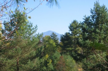 Fawn Ridge Lot - Lake Placid, NY