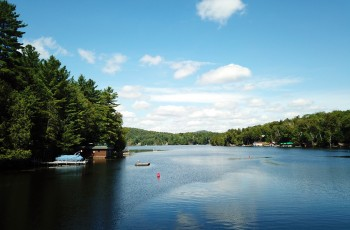 Lake Flower, Branch Farm Road - Saranac Lake, NY