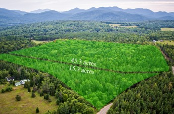 60 Acres on Averyville - Lake Placid, NY
