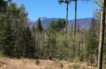 Whiteface Meadow Retreat - Wilmington, NY