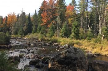 Hunters Way /Chubb River Parcel