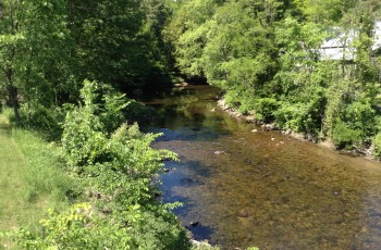 """Shinrin Yoku"" - the art of ""Forest Bathing"" ,Boquet River lots: Elizabethtown, - Elizabethtown, NY"