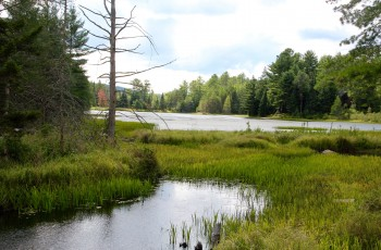 Kurung Pond Lot  - Saranac Lake, NY
