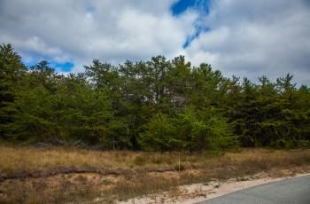 Almweg Lane in Ausable Acres - Jay, NY
