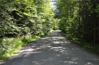 Mount Whitney Road Lot 1-3